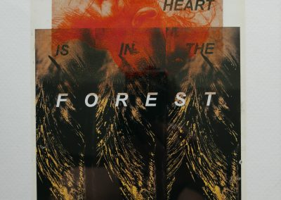 My heart is in the forest